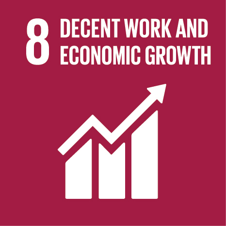 The eighth UN Sustainable Development Goal: Decent Work & Economic Growth