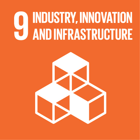 The ninth UN Sustainable Development Goal: Industry, Innovation, & Infrastructure