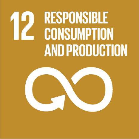 The twelfth UN Sustainable Development Goal: Responsible Consumption & Production