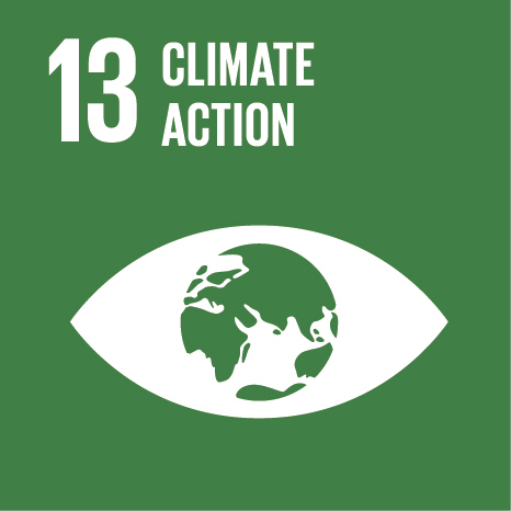 The thirteenth UN Sustainable Development Goal: Responsible Consumption & Production