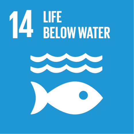 The fourteenth UN Sustainable Development Goal: Life Below Water